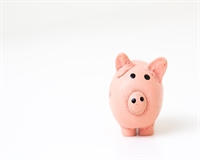 A pink piggy bank on a white background